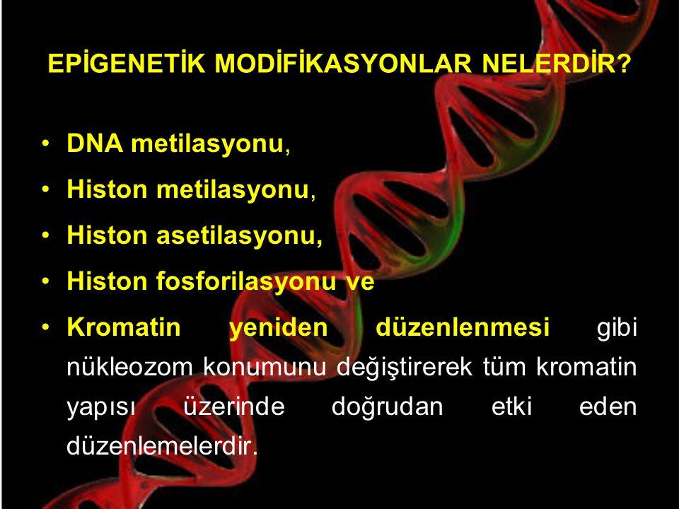 Epigenetik Değişim Ancak epigenetik değişimler geri dönüşümlü oluşları ve DNA'nın baz dizisinde bir değişime neden olmamaları gibi özellikleriyle genetik değişimlerden ayrılırlar.