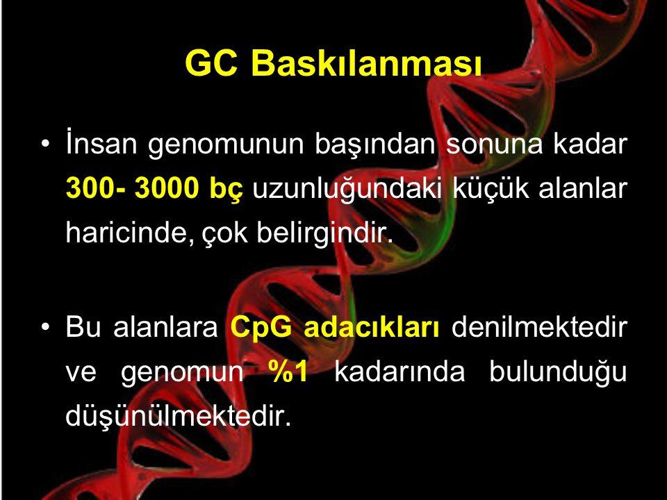 CpG NEDİR ? CpG, Sitozin fosfo Guanin anlamına gelir. İnsanlarda CpG dinükleotidi sıklığının ölçüsü çok azdır, bu CG baskılanması olarak bahsedilen bi