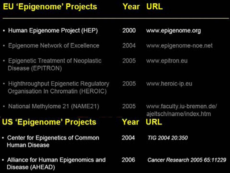 DNA Metilasyonu ve spermatogenez ilişkisi Bu çalışmanın sonuçlarına göre, hipospermatogenez ile anormal genomik imprinting ilişkilidir ve oligozoospermik erkeklerin spermleri imprinting hatalarının aktarımı hususunda artmış risk taşırlar.