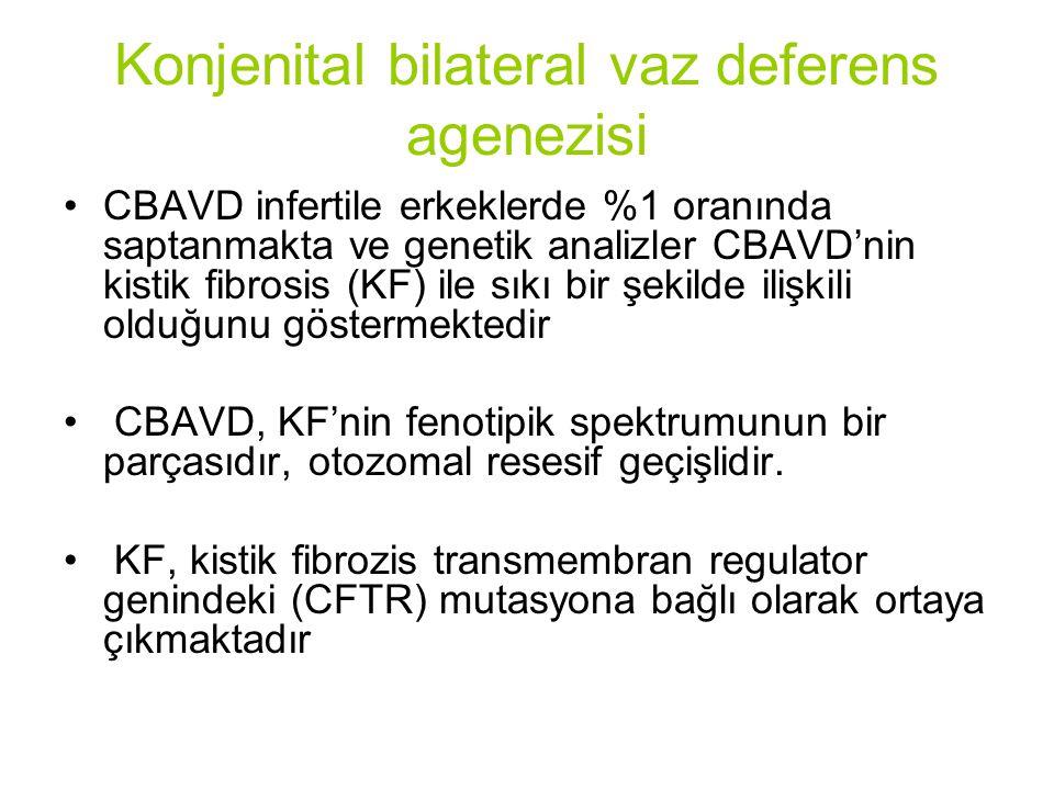 Konjenital bilateral vaz deferens agenezisi CBAVD infertile erkeklerde %1 oranında saptanmakta ve genetik analizler CBAVD'nin kistik fibrosis (KF) ile sıkı bir şekilde ilişkili olduğunu göstermektedir CBAVD, KF'nin fenotipik spektrumunun bir parçasıdır, otozomal resesif geçişlidir.