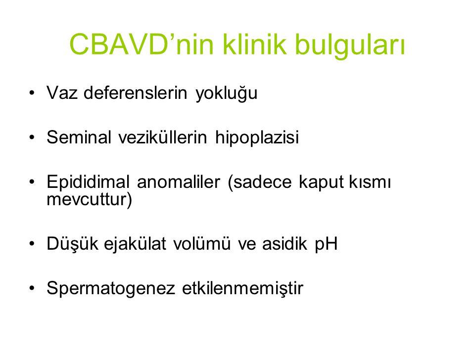 CBAVD'nin klinik bulguları Vaz deferenslerin yokluğu Seminal veziküllerin hipoplazisi Epididimal anomaliler (sadece kaput kısmı mevcuttur) Düşük ejakülat volümü ve asidik pH Spermatogenez etkilenmemiştir
