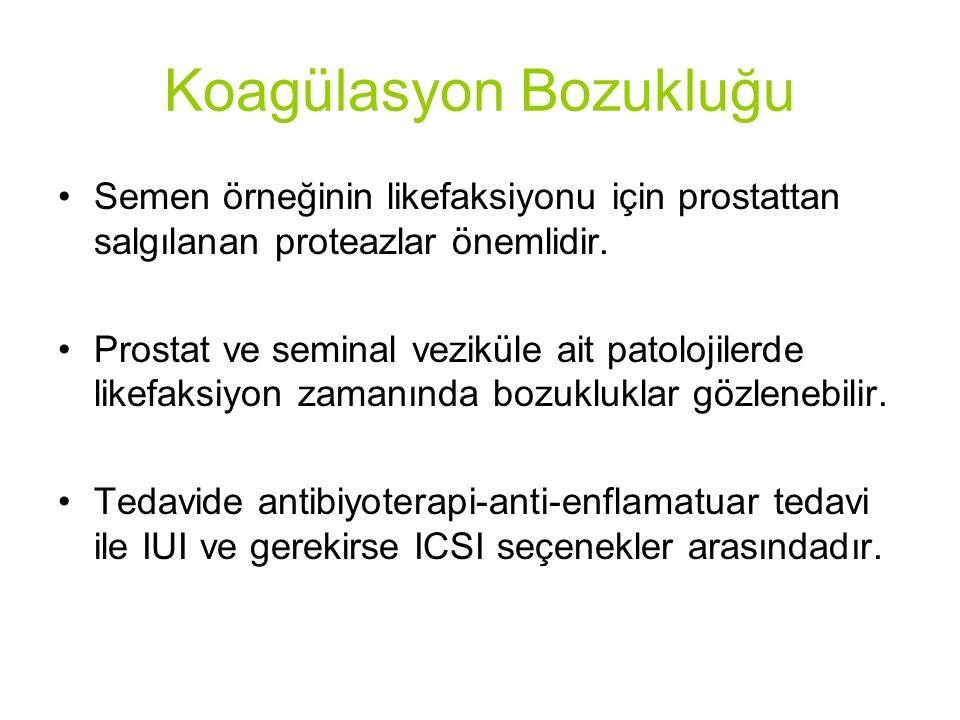Koagülasyon Bozukluğu Semen örneğinin likefaksiyonu için prostattan salgılanan proteazlar önemlidir.