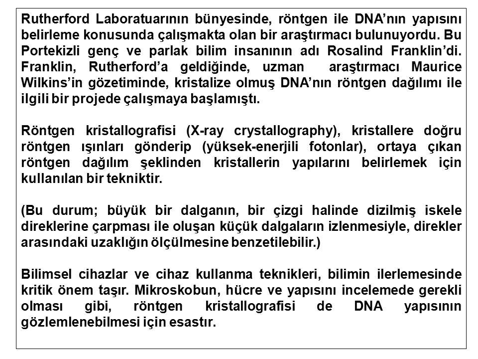 Rutherford Laboratuarının bünyesinde, röntgen ile DNA'nın yapısını belirleme konusunda çalışmakta olan bir araştırmacı bulunuyordu. Bu Portekizli genç