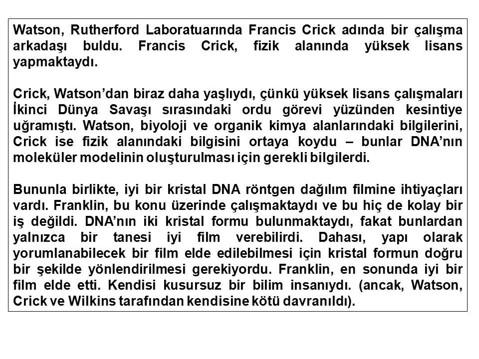 Watson, Rutherford Laboratuarında Francis Crick adında bir çalışma arkadaşı buldu. Francis Crick, fizik alanında yüksek lisans yapmaktaydı. Crick, Wat