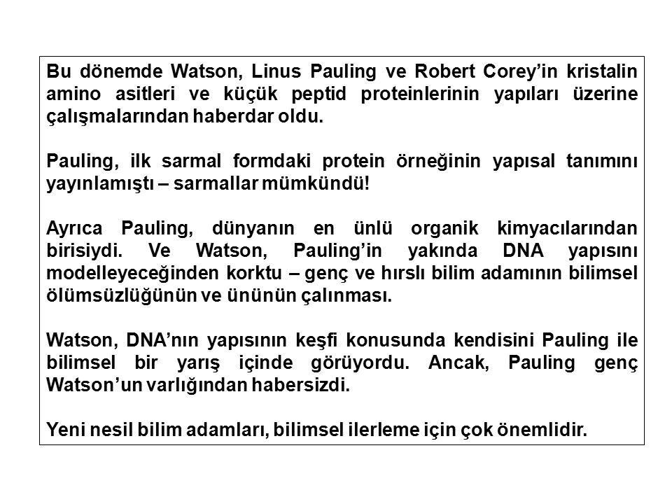 Bu dönemde Watson, Linus Pauling ve Robert Corey'in kristalin amino asitleri ve küçük peptid proteinlerinin yapıları üzerine çalışmalarından haberdar
