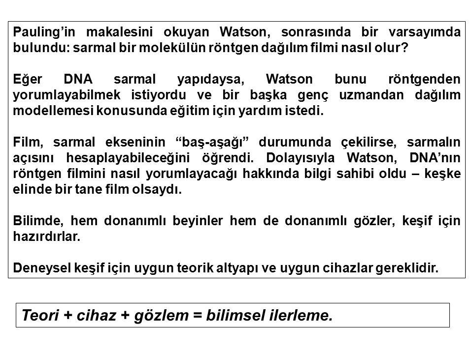 Pauling'in makalesini okuyan Watson, sonrasında bir varsayımda bulundu: sarmal bir molekülün röntgen dağılım filmi nasıl olur? Eğer DNA sarmal yapıday