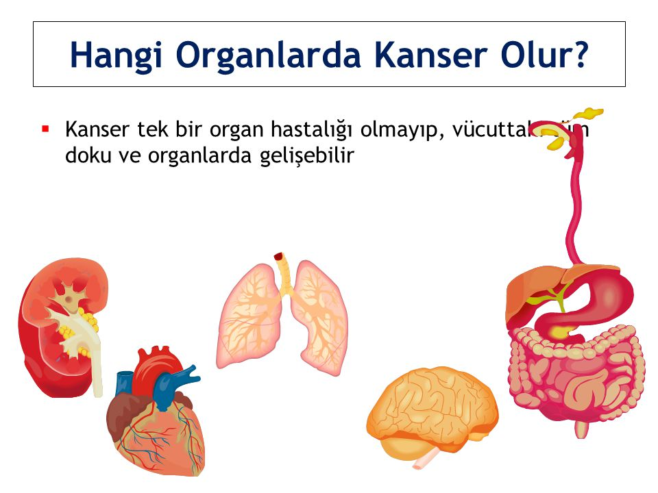 Hangi Organlarda Kanser Olur?  Kanser tek bir organ hastalığı olmayıp, vücuttaki tüm doku ve organlarda gelişebilir