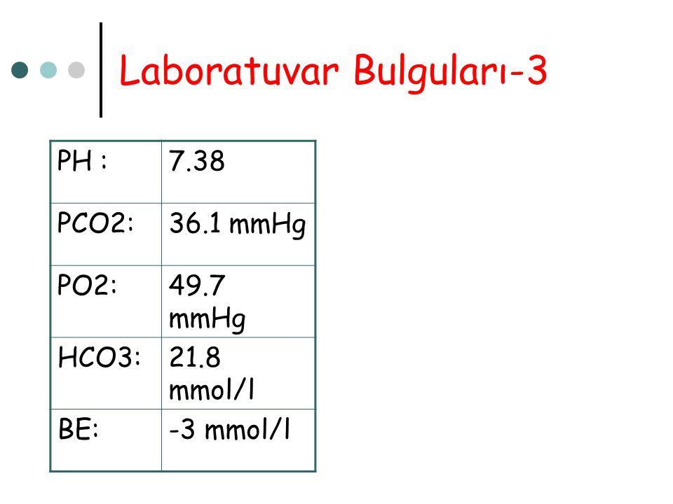 Laboratuvar Bulguları-3 PH :7.38 PCO2:36.1 mmHg PO2:49.7 mmHg HCO3:21.8 mmol/l BE:-3 mmol/l