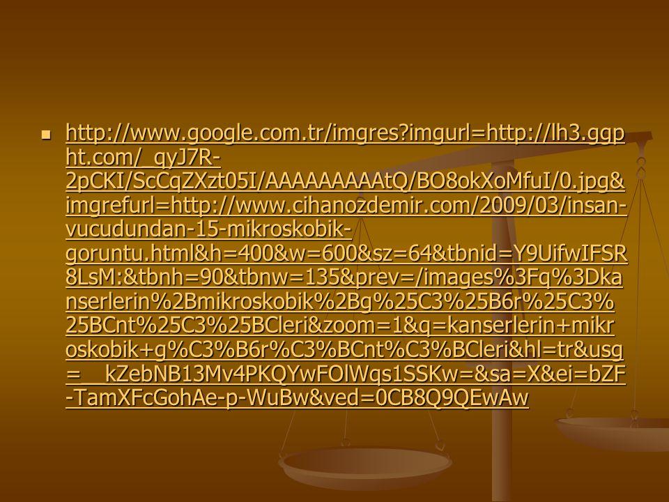 http://www.google.com.tr/imgres?imgurl=http://lh3.ggp ht.com/_qyJ7R- 2pCKI/ScCqZXzt05I/AAAAAAAAAtQ/BO8okXoMfuI/0.jpg& imgrefurl=http://www.cihanozdemi