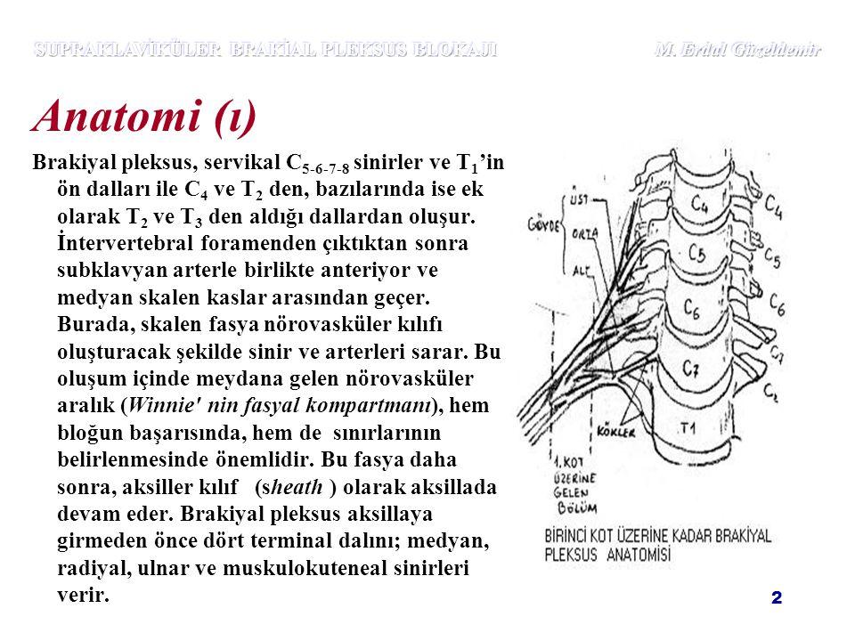 2 Anatomi (ı) Brakiyal pleksus, servikal C 5-6-7-8 sinirler ve T 1 'in ön dalları ile C 4 ve T 2 den, bazılarında ise ek olarak T 2 ve T 3 den aldığı