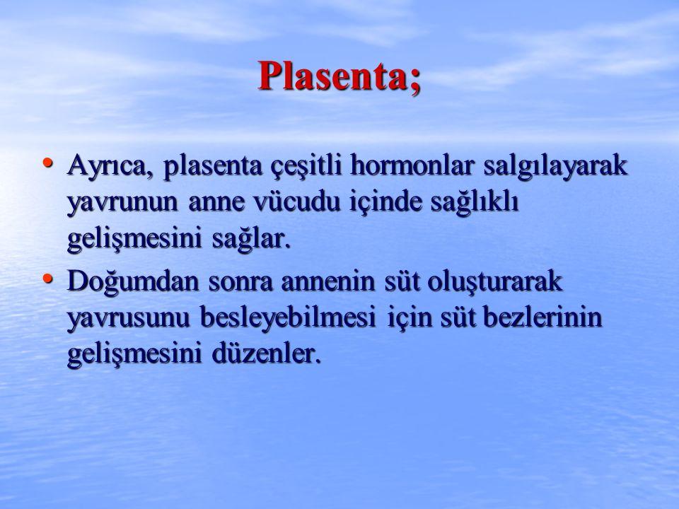 Plasenta; Ayrıca, plasenta çeşitli hormonlar salgılayarak yavrunun anne vücudu içinde sağlıklı gelişmesini sağlar. Ayrıca, plasenta çeşitli hormonlar