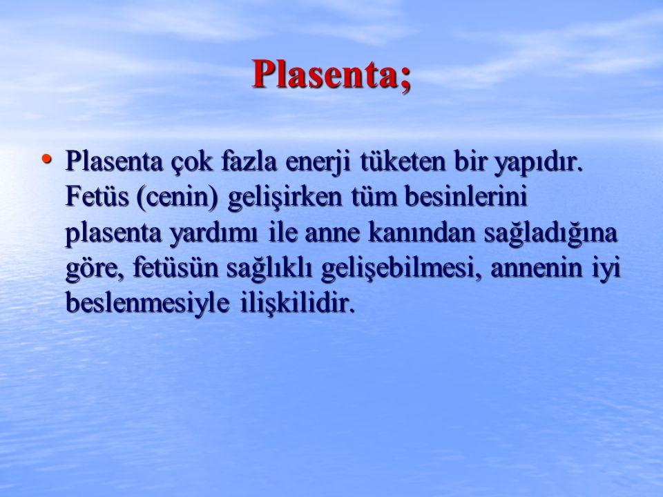 Plasenta; Plasenta çok fazla enerji tüketen bir yapıdır. Fetüs (cenin) gelişirken tüm besinlerini plasenta yardımı ile anne kanından sağladığına göre