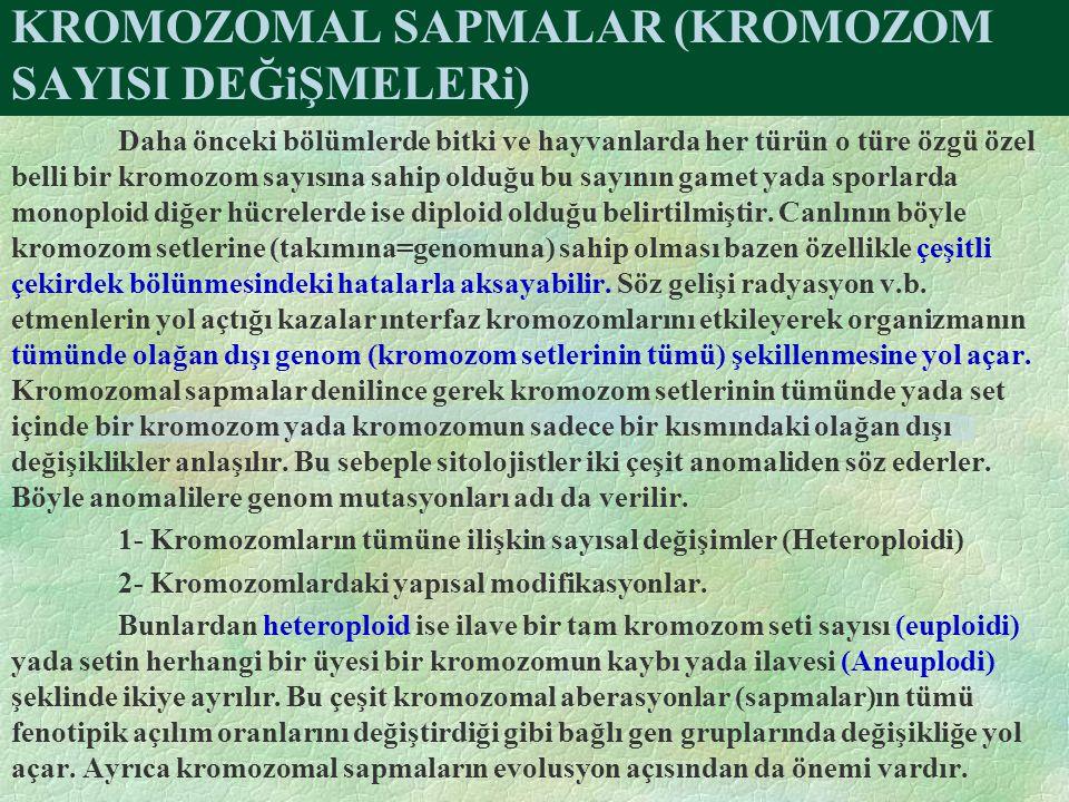 KROMOZOMAL SAPMALAR (KROMOZOM SAYISI DEĞiŞMELERi) Daha önceki bölümlerde bitki ve hayvanlarda her türün o türe özgü özel belli bir kromozom sayısına s