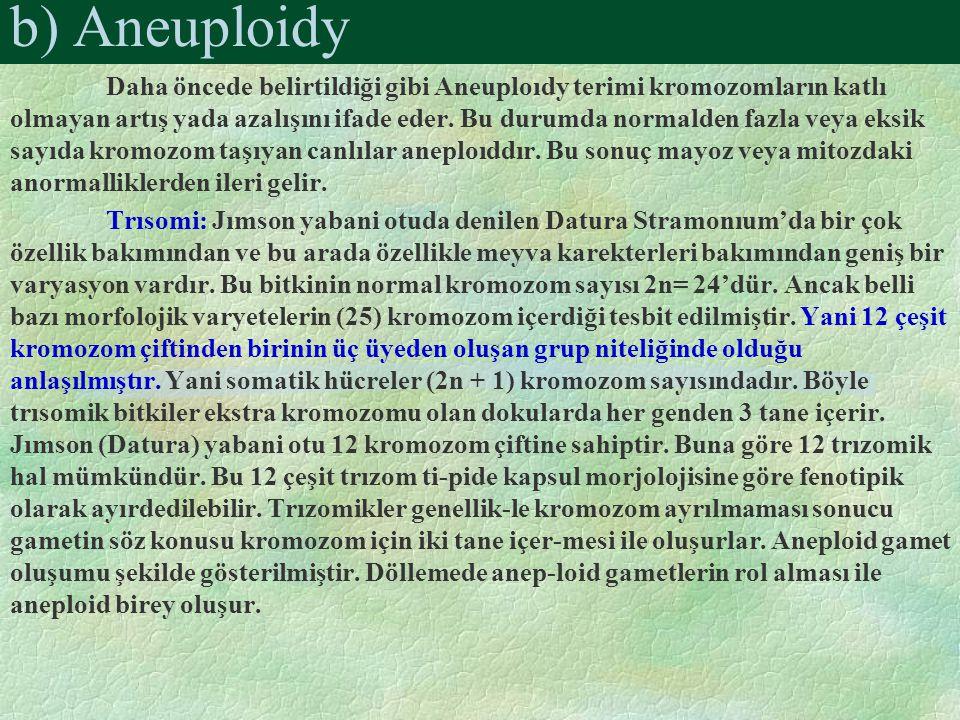 Daha öncede belirtildiği gibi Aneuploıdy terimi kromozomların katlı olmayan artış yada azalışını ifade eder. Bu durumda normalden fazla veya eksik say