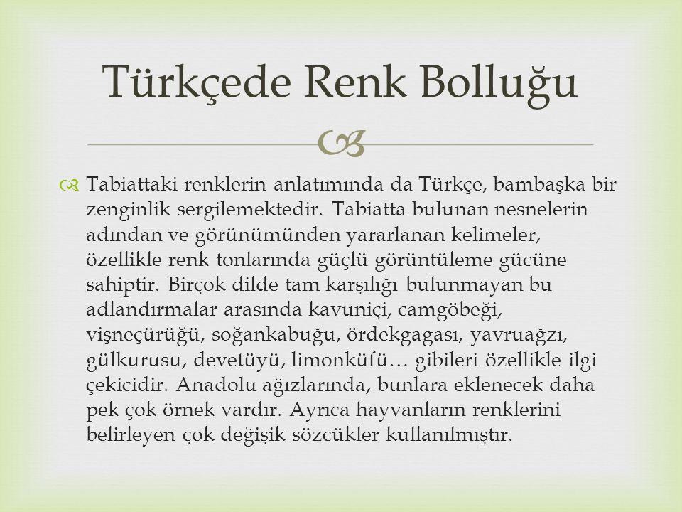   Tabiattaki renklerin anlatımında da Türkçe, bambaşka bir zenginlik sergilemektedir. Tabiatta bulunan nesnelerin adından ve görünümünden yararlanan