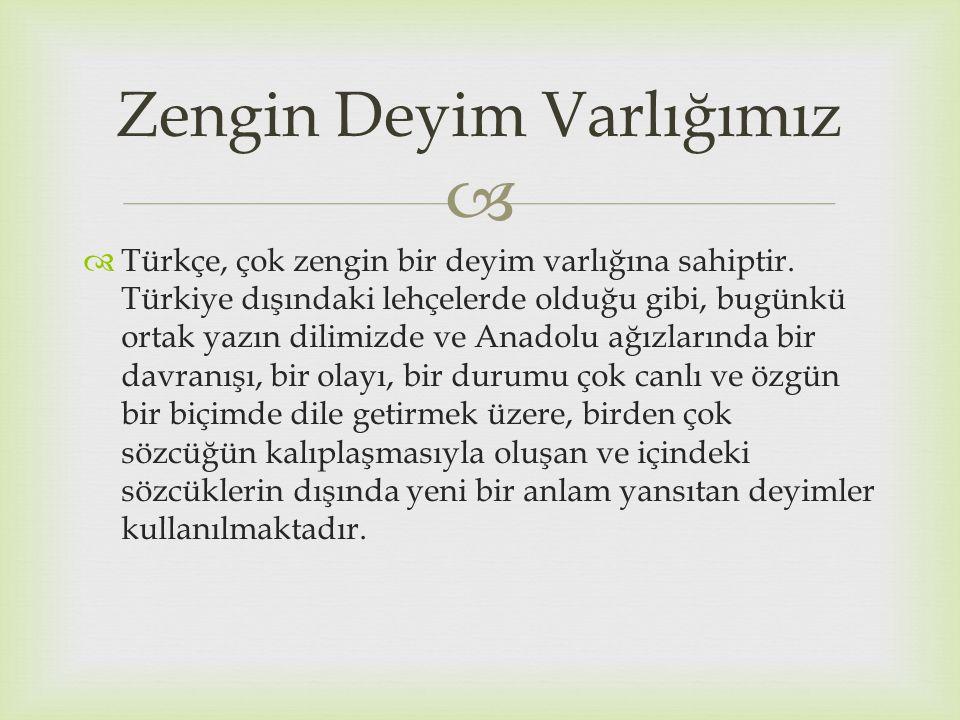   Türkçe, çok zengin bir deyim varlığına sahiptir. Türkiye dışındaki lehçelerde olduğu gibi, bugünkü ortak yazın dilimizde ve Anadolu ağızlarında bi