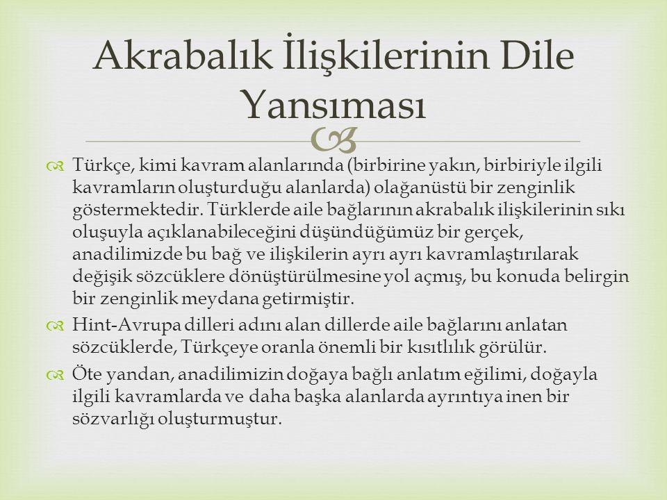  Türkçe, kimi kavram alanlarında (birbirine yakın, birbiriyle ilgili kavramların oluşturduğu alanlarda) olağanüstü bir zenginlik göstermektedir. Tü