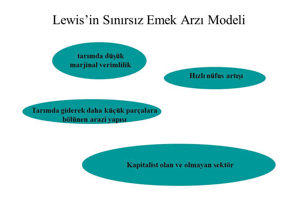 Lewis'in Sınırsız Emek Arzı Modeli tarımda düşük marjinal verimlilik Hızlı nüfus artışı Tarımda giderek daha küçük parçalara bölünen arazi yapısı Kapi