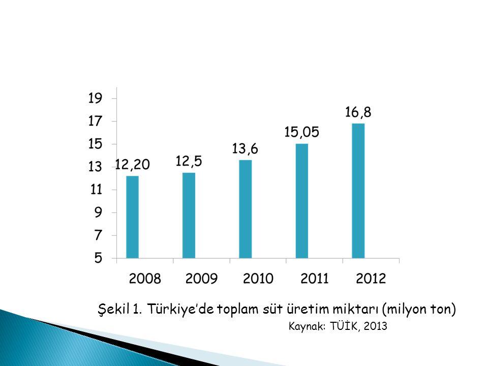 Şekil 1. Türkiye'de toplam süt üretim miktarı (milyon ton) Kaynak: TÜİK, 2013