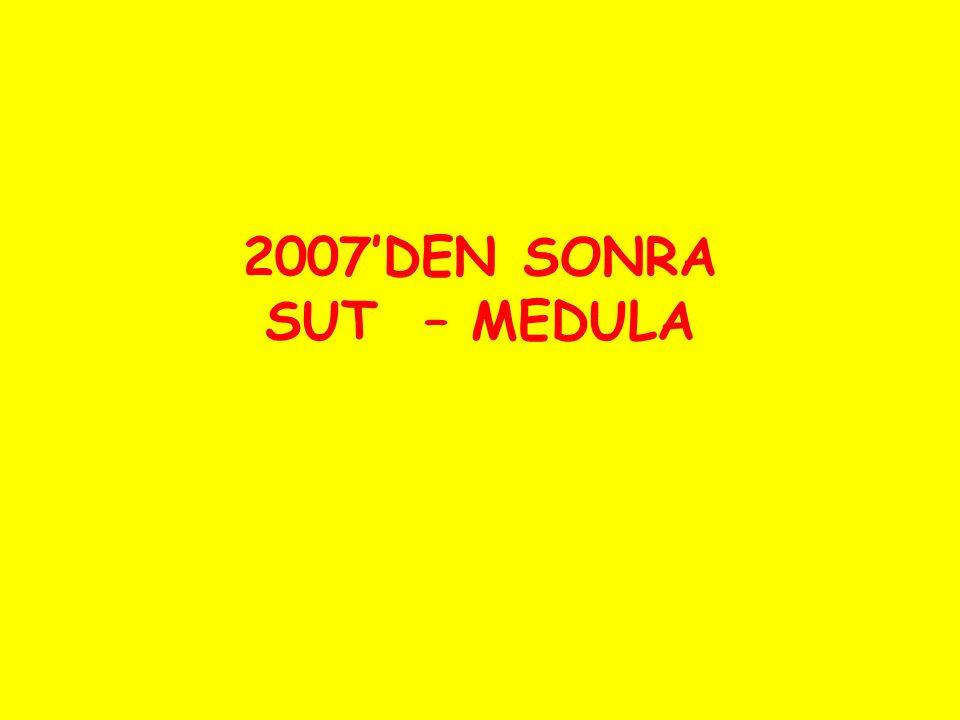 2007'DEN SONRA SUT – MEDULA