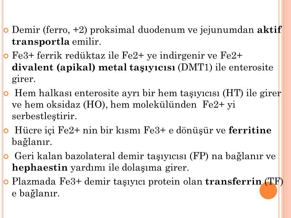 Demir (ferro, +2) proksimal duodenum ve jejunumdan aktif transportla emilir.