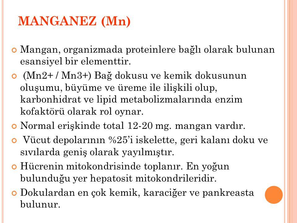 MANGANEZ (Mn) Mangan, organizmada proteinlere bağlı olarak bulunan esansiyel bir elementtir.