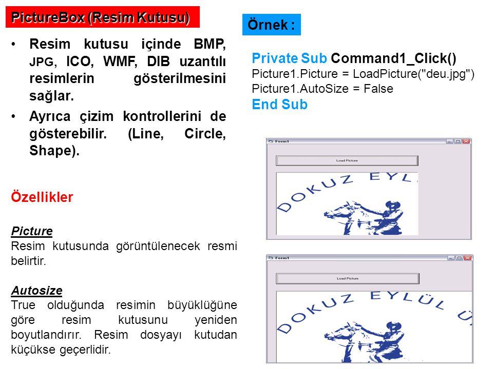 PictureBox (Resim Kutusu) Resim kutusu içinde BMP, JPG, ICO, WMF, DIB uzantılı resimlerin gösterilmesini sağlar.