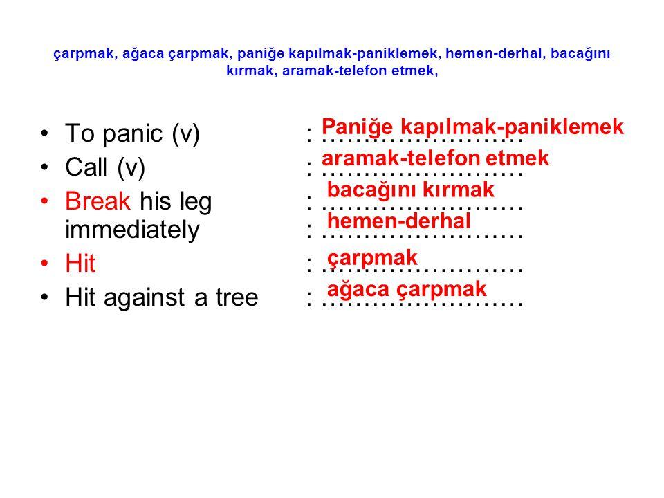 çarpmak, ağaca çarpmak, paniğe kapılmak-paniklemek, hemen-derhal, bacağını kırmak, aramak-telefon etmek, To panic (v): …………………… Call (v): …………………… Bre