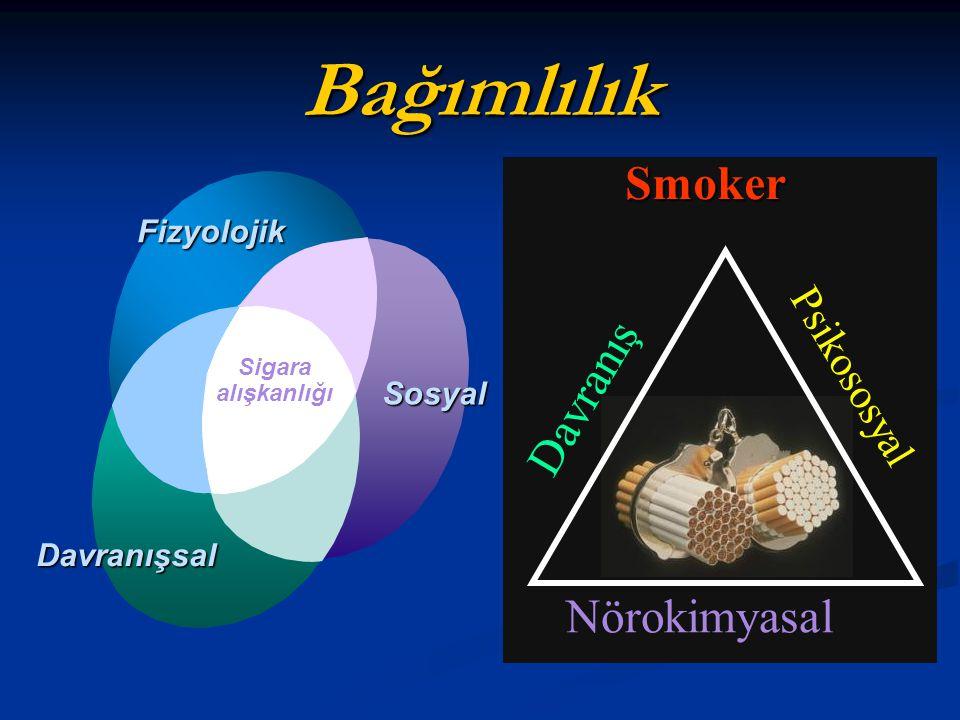 BağımlılıkSmoker Nörokimyasal Davranış Psikososyal Sigara alışkanlığı Fizyolojik Sosyal Davranışsal