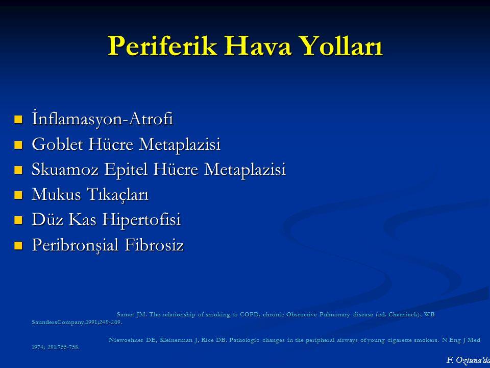 Periferik Hava Yolları İnflamasyon-Atrofi İnflamasyon-Atrofi Goblet Hücre Metaplazisi Goblet Hücre Metaplazisi Skuamoz Epitel Hücre Metaplazisi Skuamo