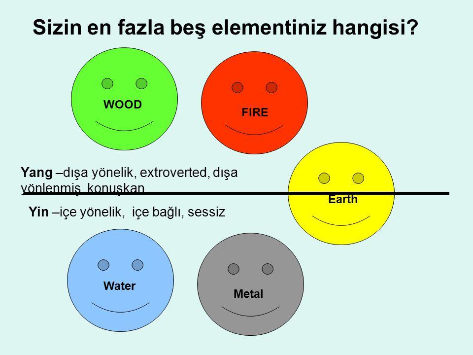 WOOD FIRE Earth Metal Water Yang –dışa yönelik, extroverted, dışa yönlenmiş, konuşkan Yin –içe yönelik, içe bağlı, sessiz Sizin en fazla beş elementin