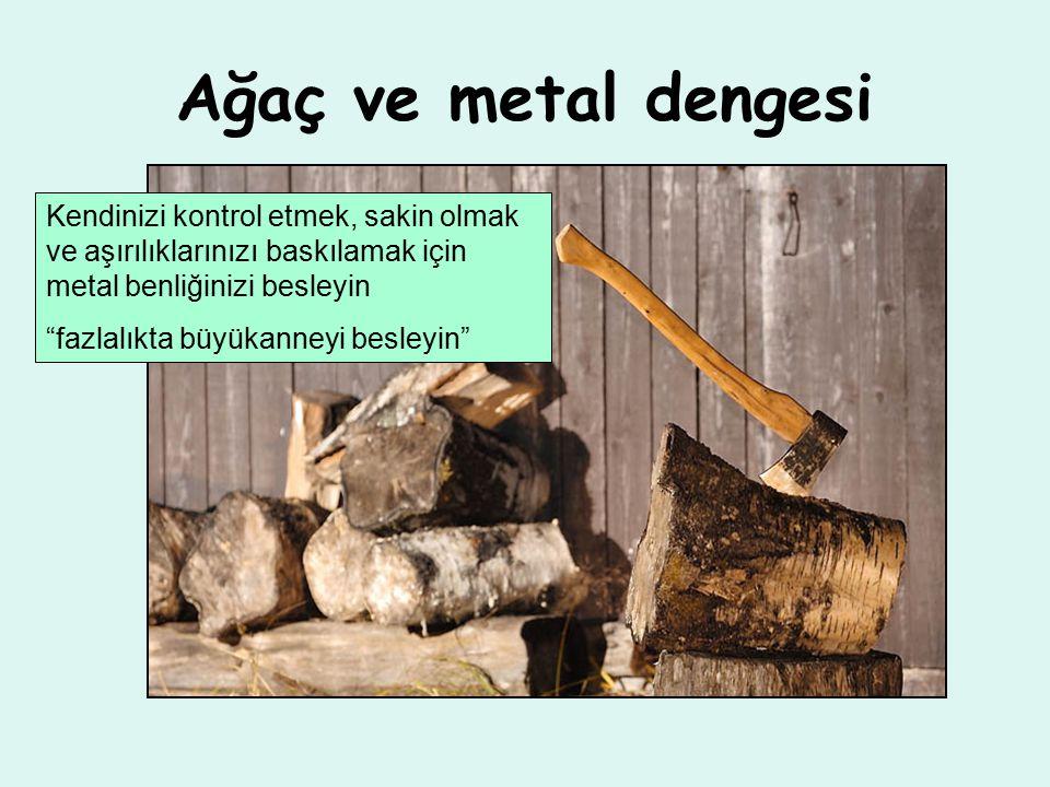 Ağaç ve metal dengesi Kendinizi kontrol etmek, sakin olmak ve aşırılıklarınızı baskılamak için metal benliğinizi besleyin fazlalıkta büyükanneyi besleyin