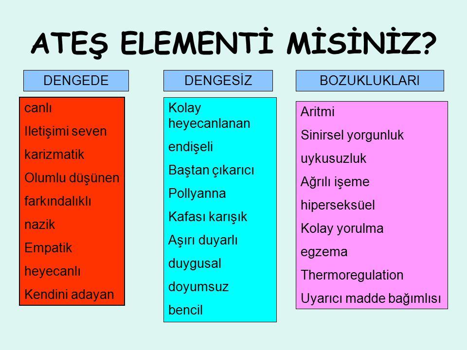 ATEŞ ELEMENTİ MİSİNİZ.