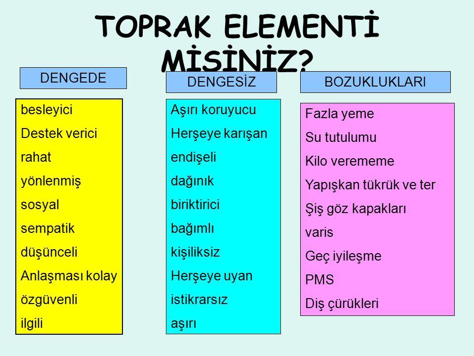 TOPRAK ELEMENTİ MİSİNİZ.