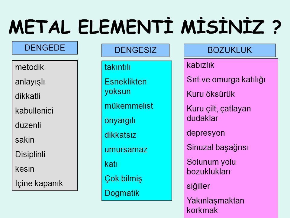METAL ELEMENTİ MİSİNİZ .