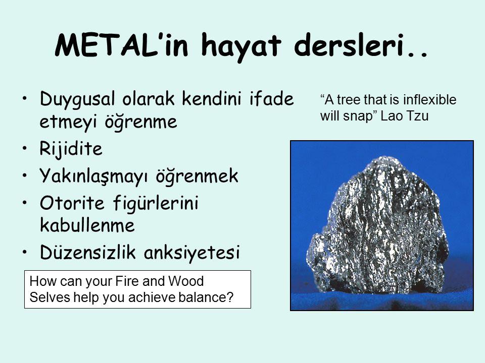 METAL'in hayat dersleri..