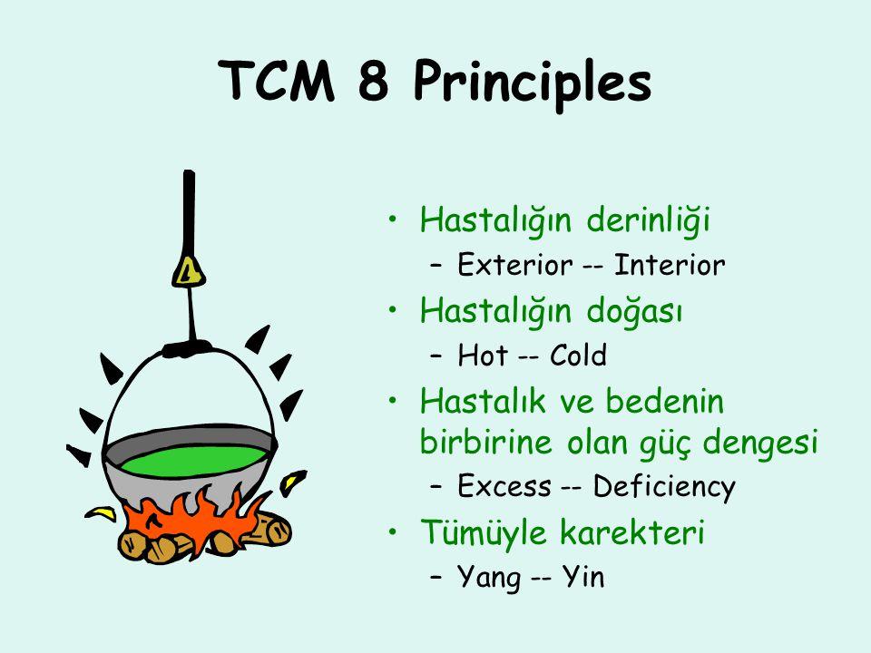 TCM 8 Principles Hastalığın derinliği –Exterior -- Interior Hastalığın doğası –Hot -- Cold Hastalık ve bedenin birbirine olan güç dengesi –Excess -- Deficiency Tümüyle karekteri –Yang -- Yin