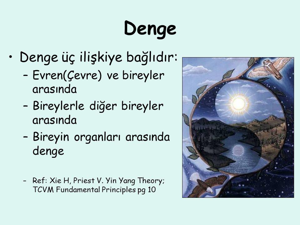 Denge Denge üç ilişkiye bağlıdır: –Evren(Çevre) ve bireyler arasında –Bireylerle diğer bireyler arasında –Bireyin organları arasında denge –Ref: Xie H, Priest V.