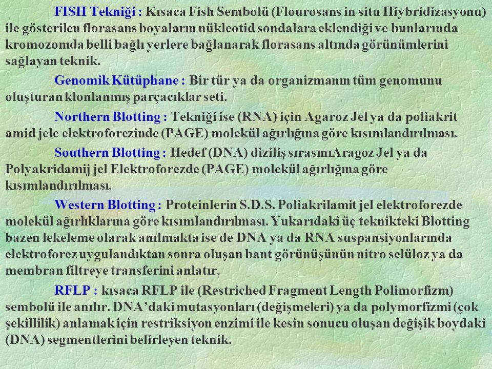 FISH Tekniği : Kısaca Fish Sembolü (Flourosans in situ Hiybridizasyonu) ile gösterilen florasans boyaların nükleotid sondalara eklendiği ve bunlarında