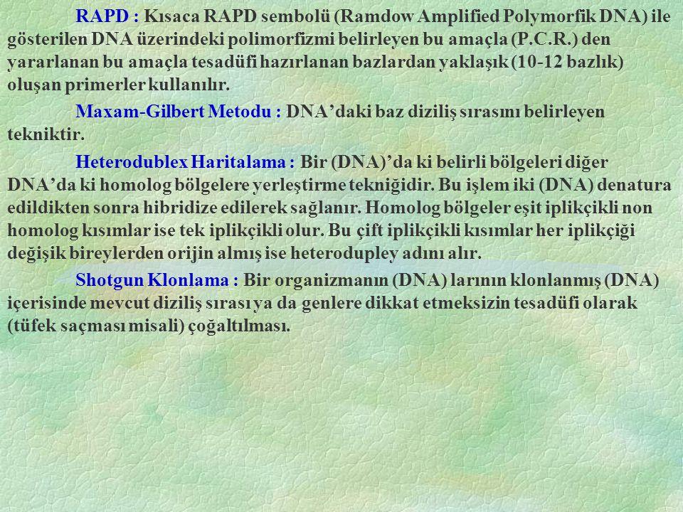 RAPD : Kısaca RAPD sembolü (Ramdow Amplified Polymorfik DNA) ile gösterilen DNA üzerindeki polimorfizmi belirleyen bu amaçla (P.C.R.) den yararlanan b