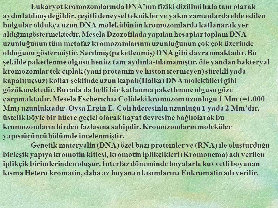 Eukaryot kromozomlarında DNA'nın fiziki dizilimi hala tam olarak aydınlatılmış değildir. çeşitli deneysel teknikler ve yakın zamanlarda elde edilen bu
