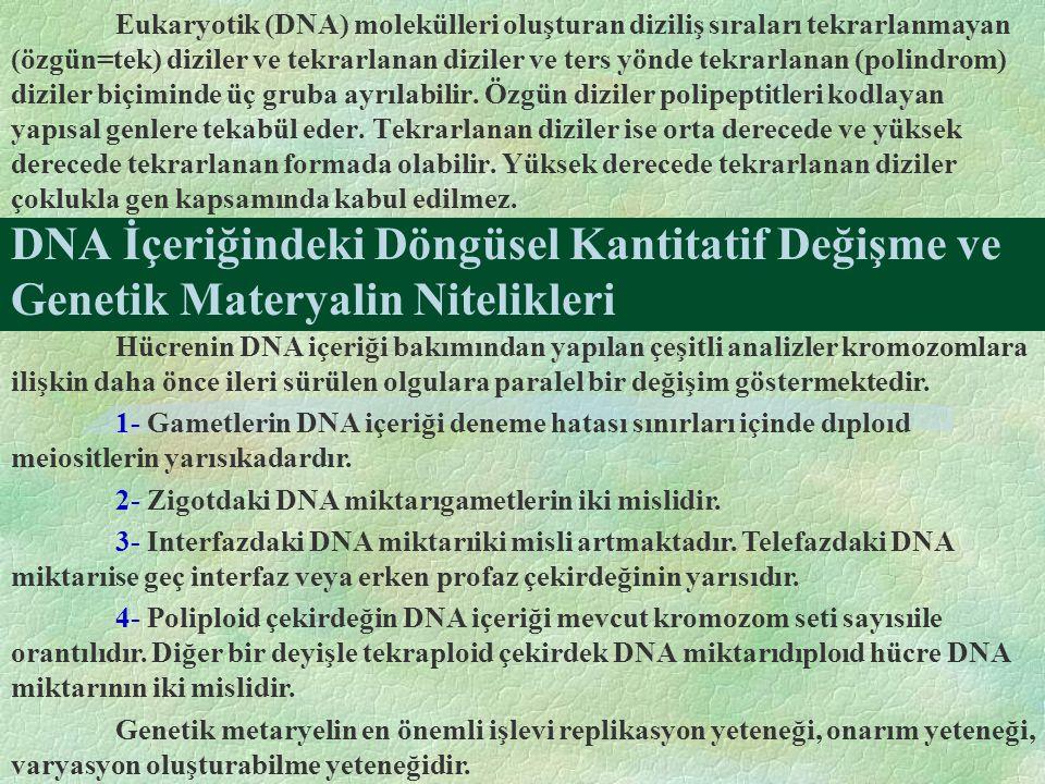 DNA İçeriğindeki Döngüsel Kantitatif Değişme ve Genetik Materyalin Nitelikleri Eukaryotik (DNA) molekülleri oluşturan diziliş sıraları tekrarlanmayan