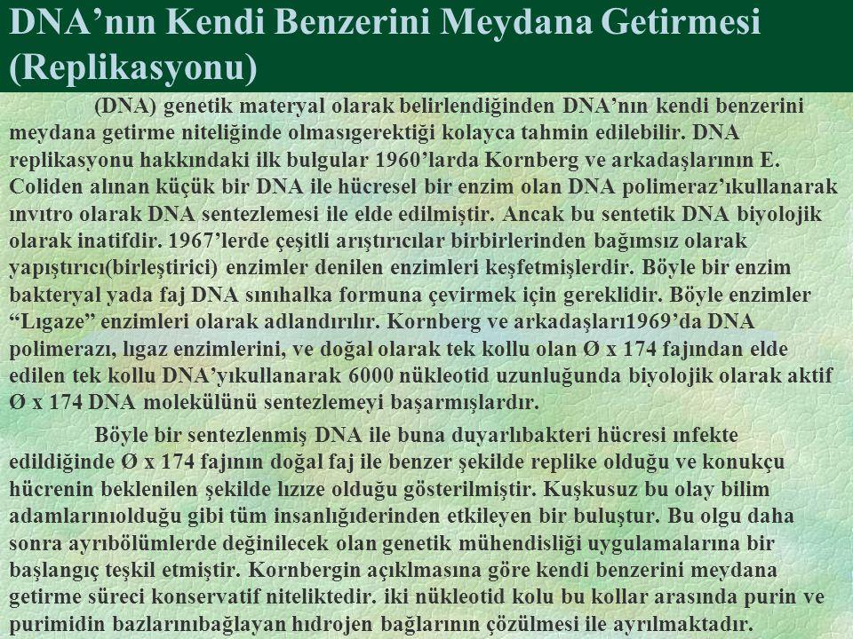 DNA'nın Kendi Benzerini Meydana Getirmesi (Replikasyonu) (DNA) genetik materyal olarak belirlendiğinden DNA'nın kendi benzerini meydana getirme niteli