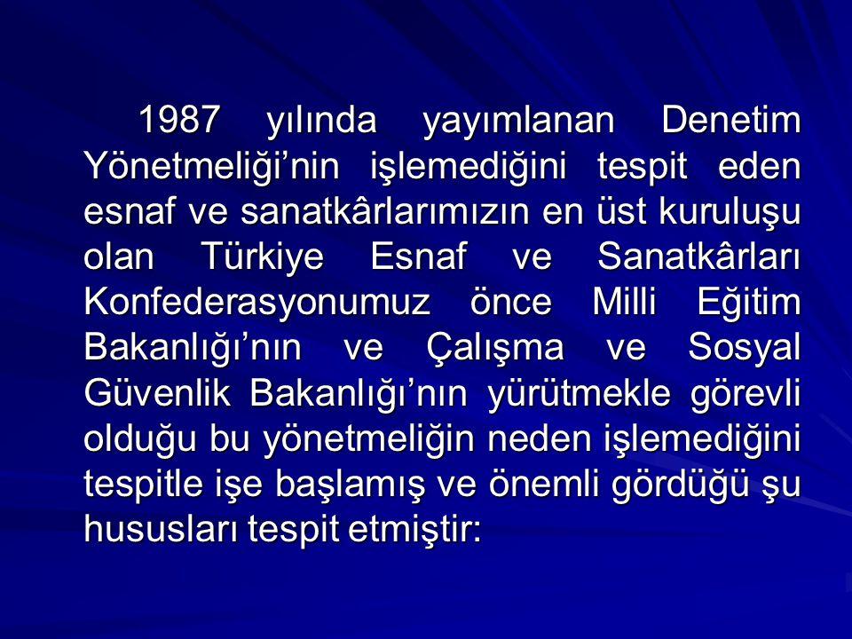 1987 yılında yayımlanan Denetim Yönetmeliği'nin işlemediğini tespit eden esnaf ve sanatkârlarımızın en üst kuruluşu olan Türkiye Esnaf ve Sanatkârları Konfederasyonumuz önce Milli Eğitim Bakanlığı'nın ve Çalışma ve Sosyal Güvenlik Bakanlığı'nın yürütmekle görevli olduğu bu yönetmeliğin neden işlemediğini tespitle işe başlamış ve önemli gördüğü şu hususları tespit etmiştir: