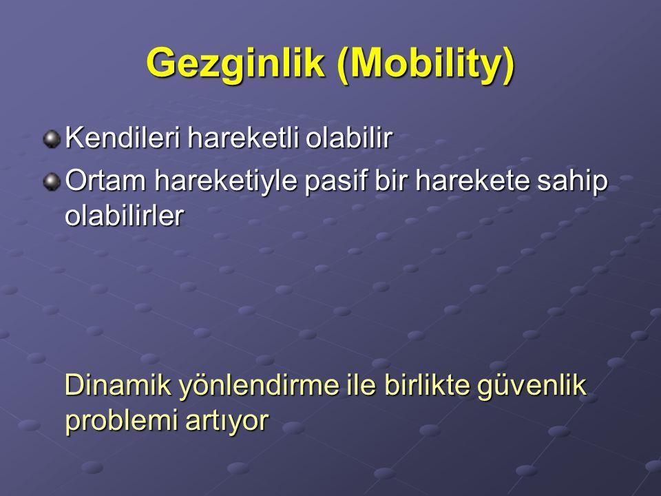 Gezginlik (Mobility) Kendileri hareketli olabilir Ortam hareketiyle pasif bir harekete sahip olabilirler Dinamik yönlendirme ile birlikte güvenlik pro