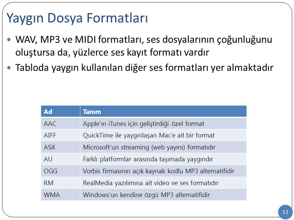 12 WAV, MP3 ve MIDI formatları, ses dosyalarının çoğunluğunu oluştursa da, yüzlerce ses kayıt formatı vardır Tabloda yaygın kullanılan diğer ses forma
