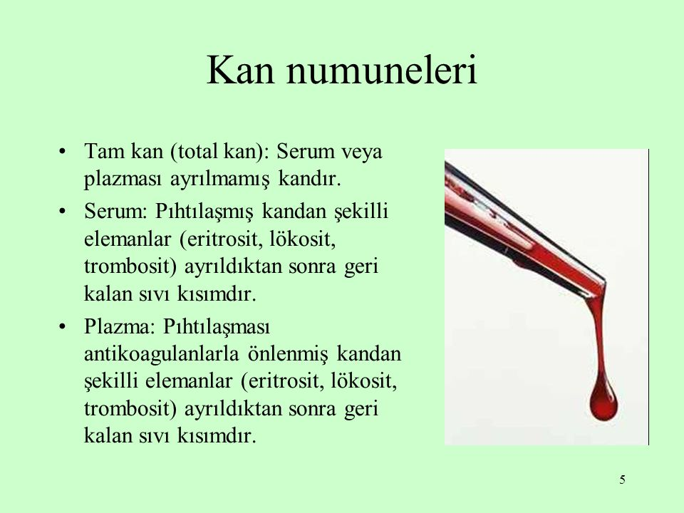 5 Kan numuneleri Tam kan (total kan): Serum veya plazması ayrılmamış kandır. Serum: Pıhtılaşmış kandan şekilli elemanlar (eritrosit, lökosit, trombosi