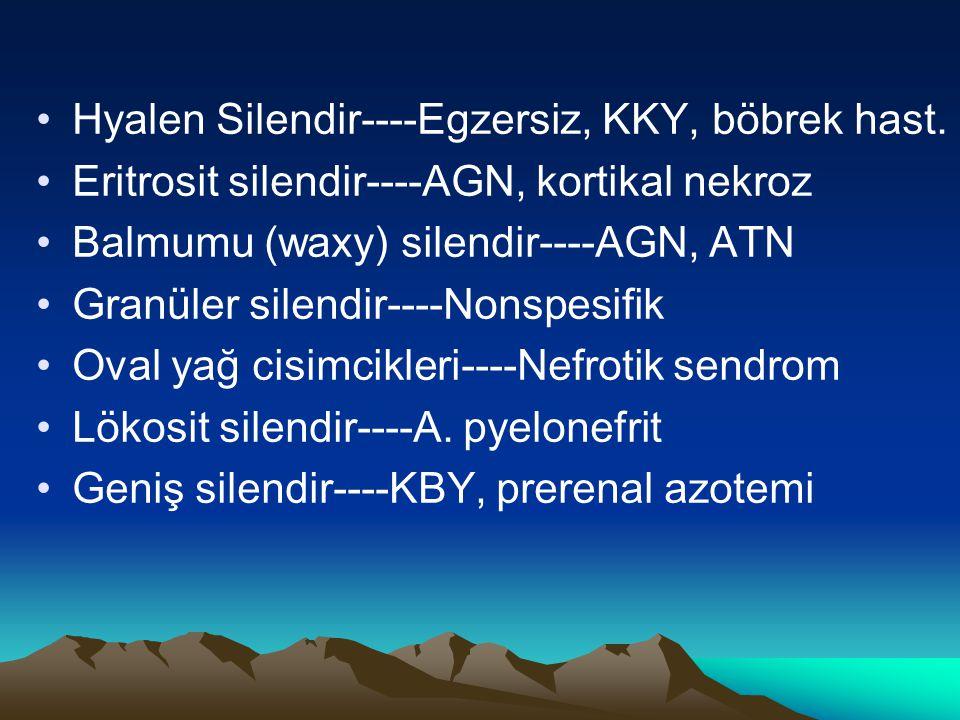 Hyalen Silendir----Egzersiz, KKY, böbrek hast. Eritrosit silendir----AGN, kortikal nekroz Balmumu (waxy) silendir----AGN, ATN Granüler silendir----Non