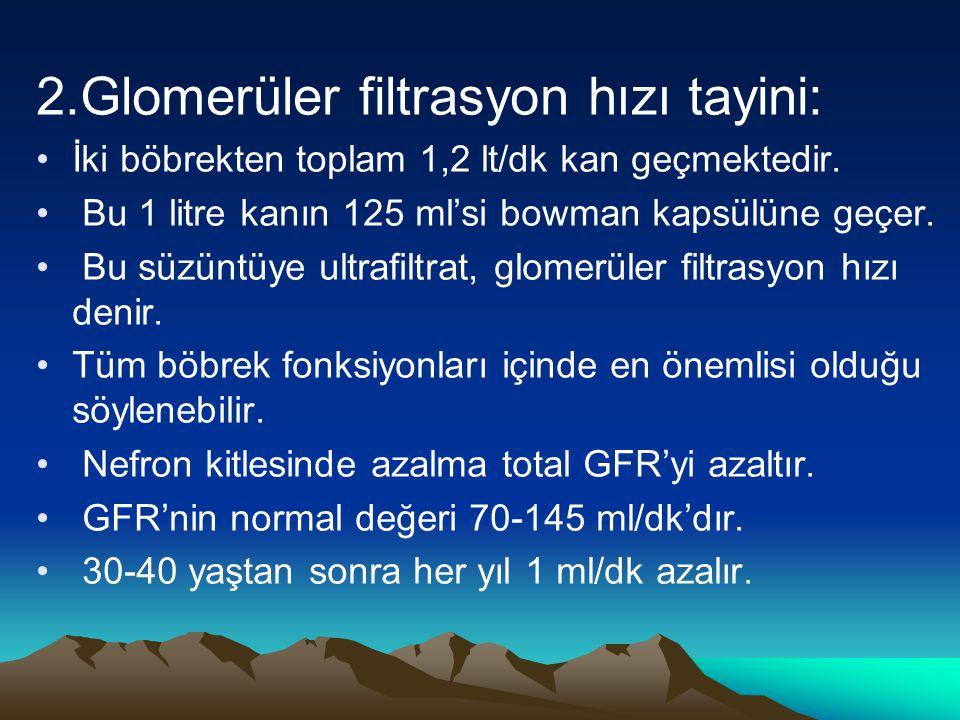 2.Glomerüler filtrasyon hızı tayini: İki böbrekten toplam 1,2 lt/dk kan geçmektedir. Bu 1 litre kanın 125 ml'si bowman kapsülüne geçer. Bu süzüntüye u