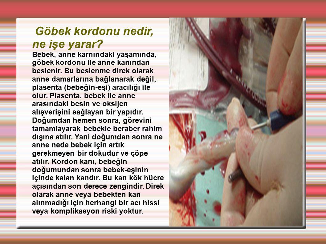 Göbek kordonu nedir, ne işe yarar? Bebek, anne karnındaki yaşamında, göbek kordonu ile anne kanından beslenir. Bu beslenme direk olarak anne damarları